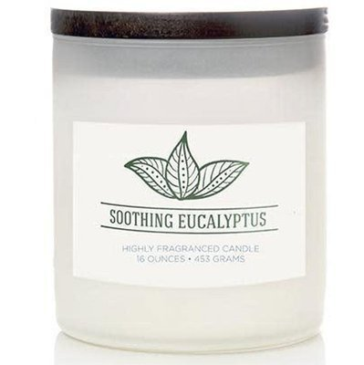Colonial Candle Wellness large scented jar candle soy blend 16 oz 453 g - Soothing Eucalyptus
